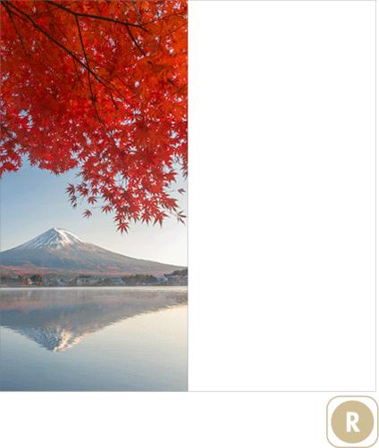Sogal-Colors-Montage