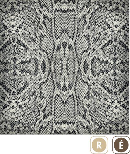 Sogal-Colors-Serpent