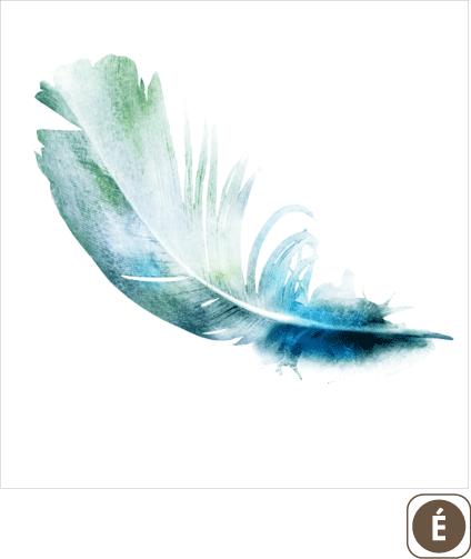 Sogal-Colors-Plume