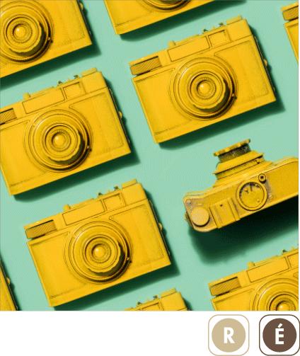 Sogal-Colors-Appareils-Photos