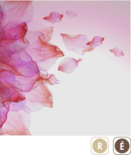 Sogal-Colors-Volupte