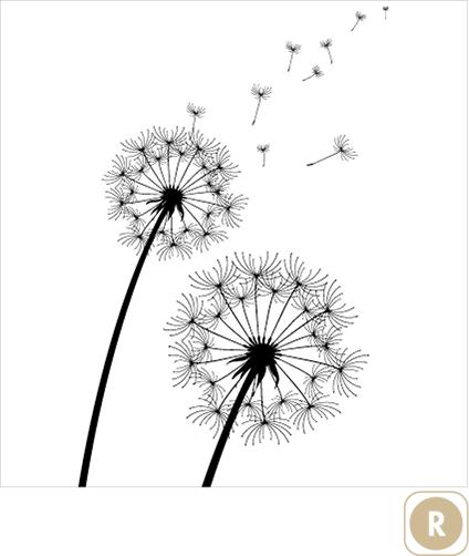 Sogal-Colors-Fleur-de-pissenlit